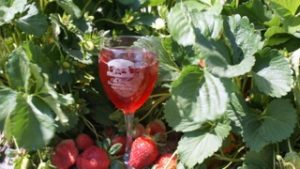 Strawberry and Wine Festival @ Sunset Beach Town Park